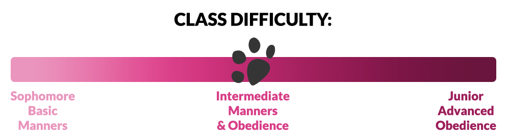 Class difficulty